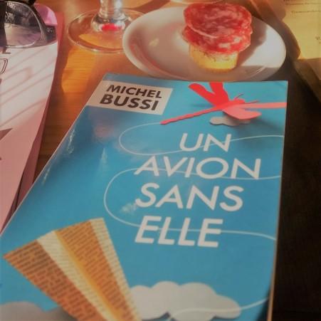 UN_AVION_SANS_ELLE_MICHEL_BUSSI